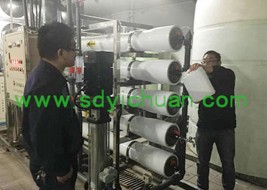 Weifang Wanda Group Pullman 15T single stage reverse osmosis equipment